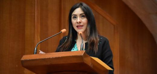 Llama 60 legislatura del Edoméx a atender recomendación sobre protección a periodistas